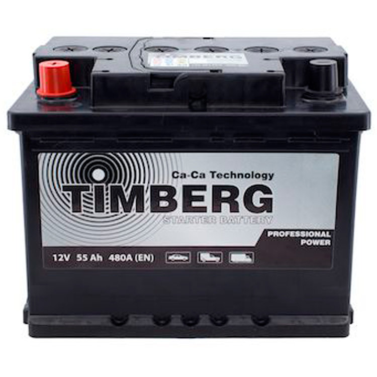 6СТ-55VL Timberg Professional Power 55Ah L 480A