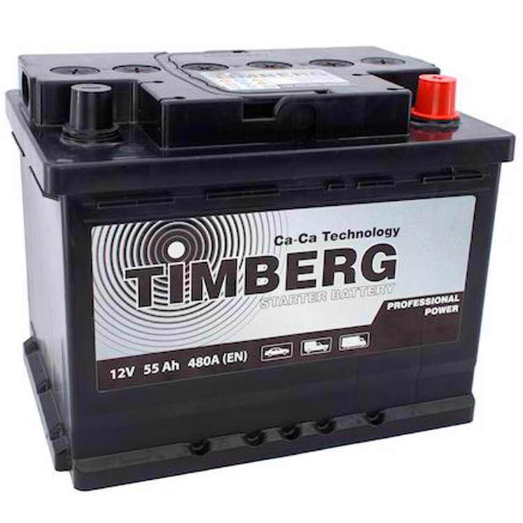 6СТ-55VL Timberg Professional Power 55Ah R 480A