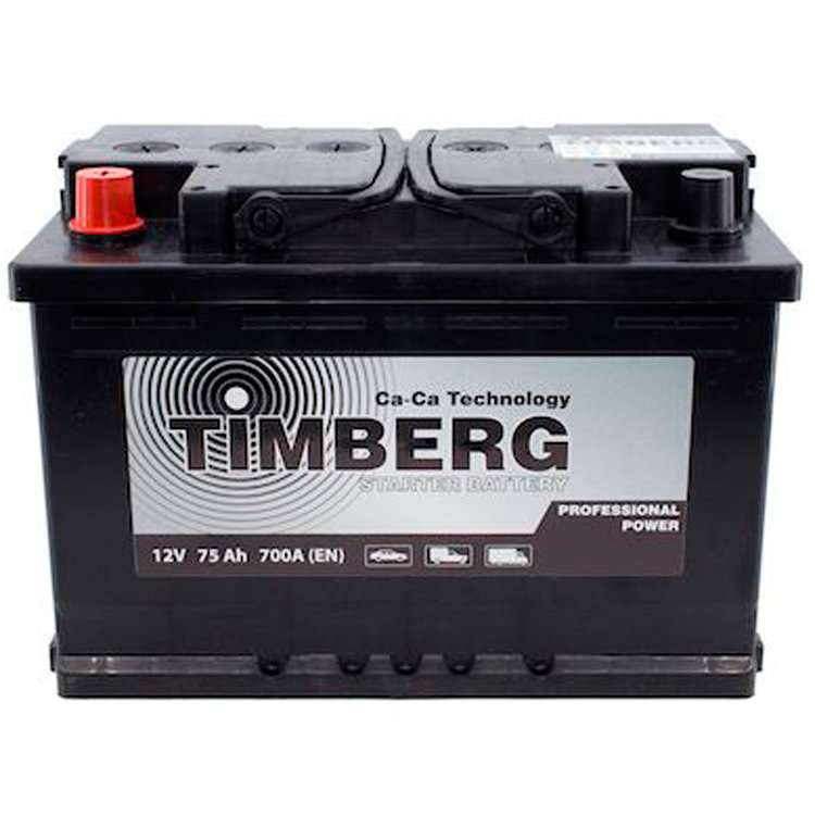6СТ-75VL Timberg Professional Power 75Ah L 700A